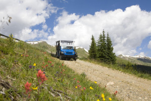 Breckenridge Summer Fun Park